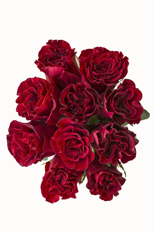 Hearts Red Rose Wedding Centerpieces for Sale Online @ Flower Explosion