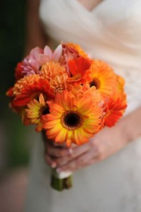 Best wedding flowers cheap flowers for wedding flower for Fall wedding bouquets for sale