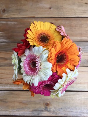 Cheeky - Mixed Daisies Bouquet