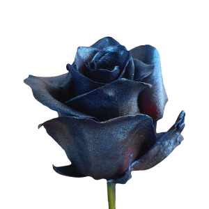 Metallic Blue Roses