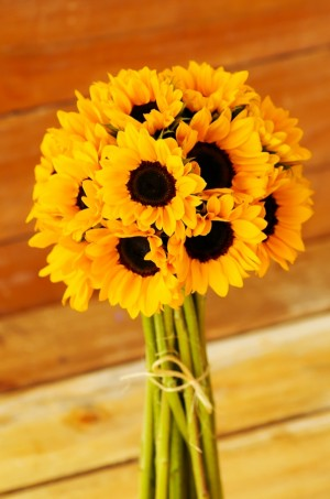 Mini Yellow Sunflowers