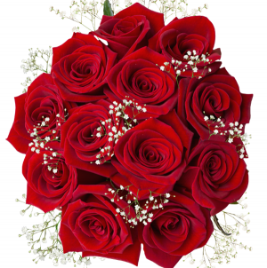 mothers day red roses and gypso