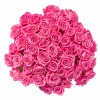 50 Pink Roses