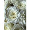 alabaster wedding rose