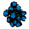 blue and black roses