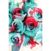 christmas tinted roses