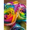 glitter rainbow rose closeup