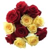 Mixed Red and Yellow Roses