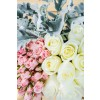Roses, Spray Roses, and Dusty Miller DIY Combo