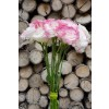 Lisianthus White and Pink