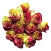 bouquet red yellow tinted roses