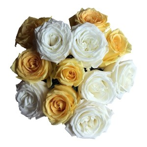 Mixed White and Yellow Roses - 50 Stems
