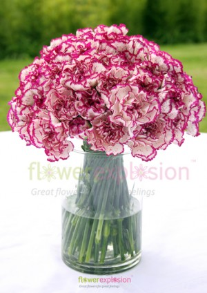 Purple & White Carnations Centerpiece