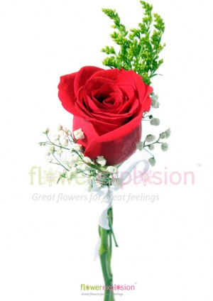 One Rose Fundraising Bouquet