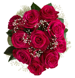 Hot Pink Roses Babys Breath Bouquet