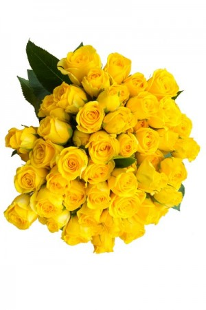 Yellow Spray Roses - flowerexplosion.com