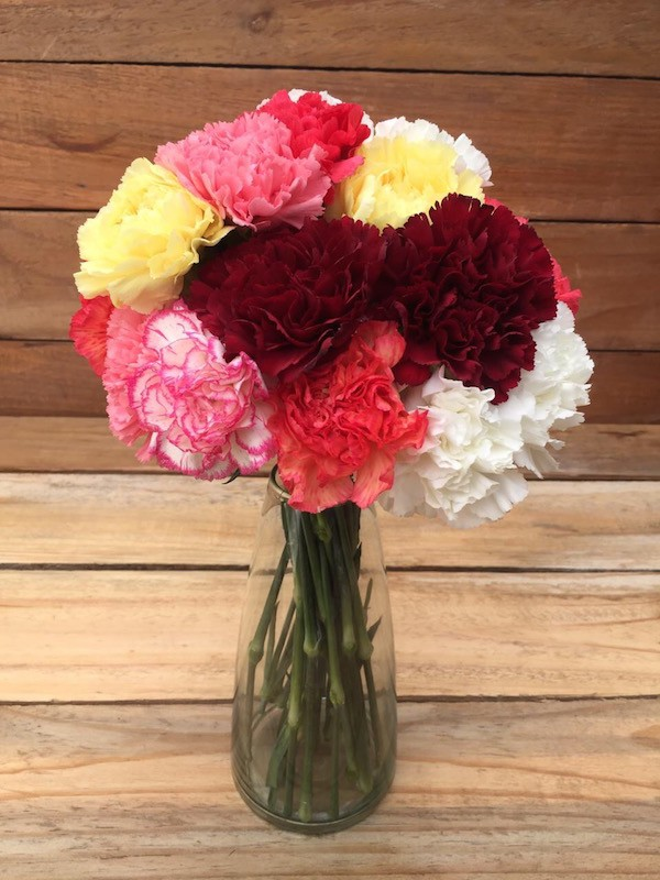 Charming Bouquet - Mixed Color Carnations