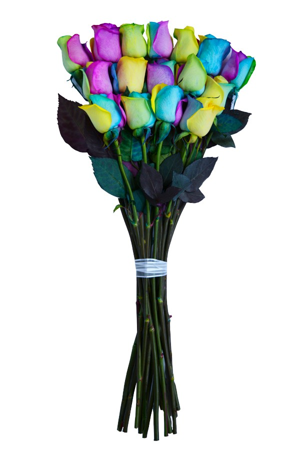Rainbow roses rainbow roses delivery tie dye roses for How to make tie dye roses