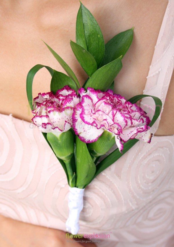 Purple & White Carnations Corsage