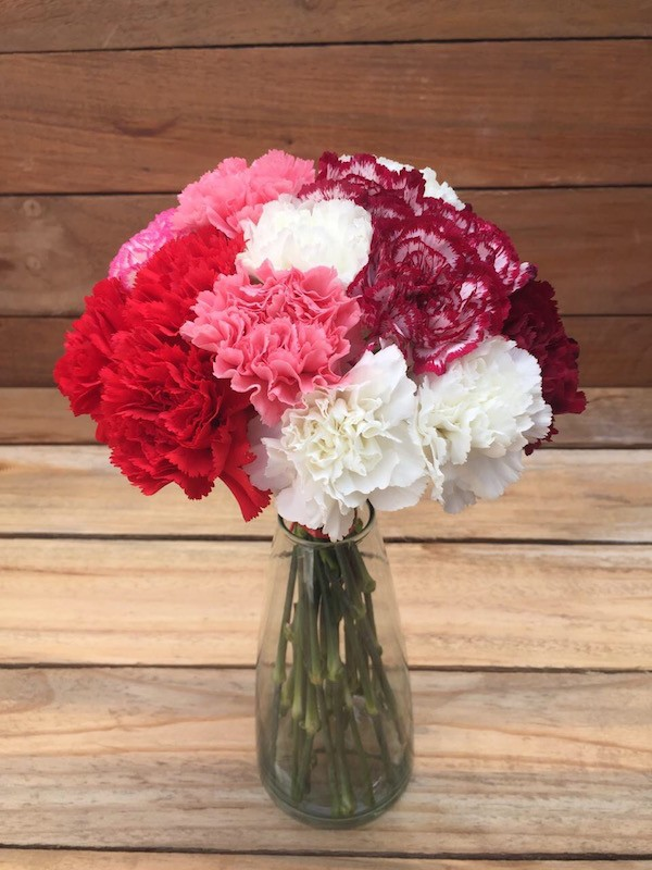 Red White Pink Purple Carnations Bouquet