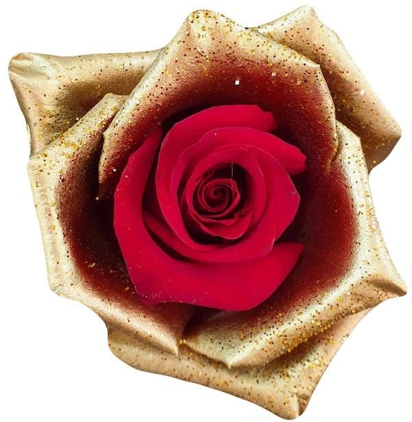 red rose golden petals