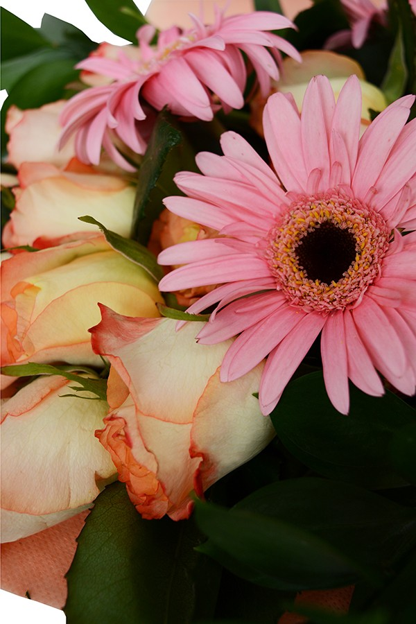 Strawberry Shortcake Gerbera and Rose Bouquet
