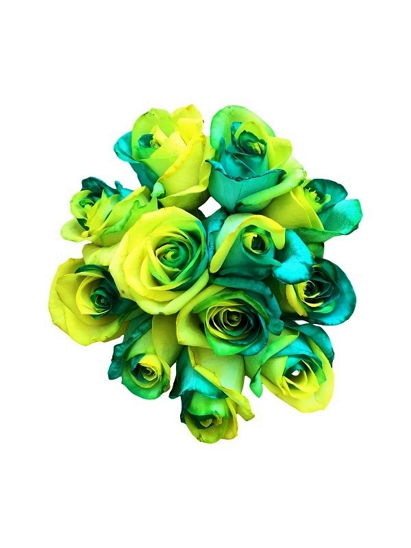 green and yellow roses