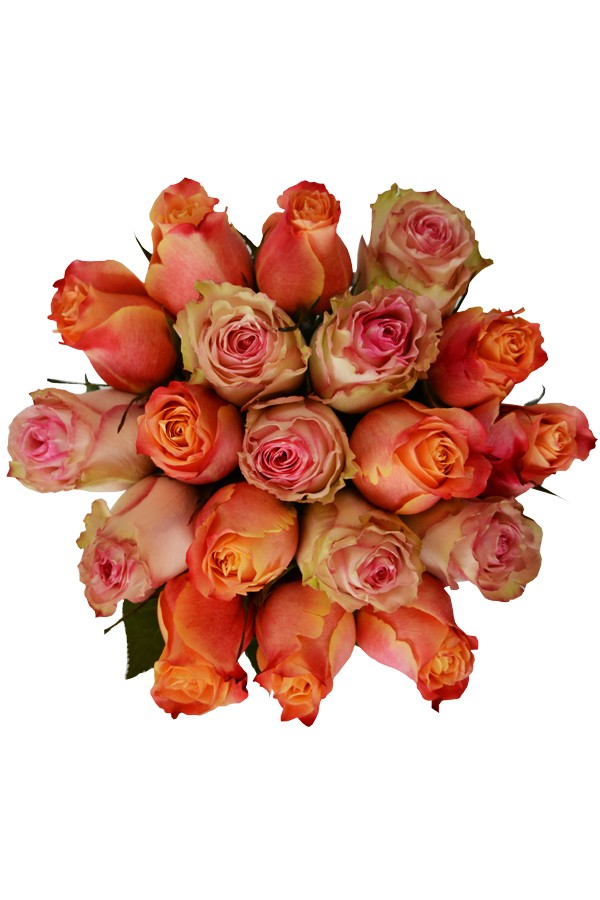 Peaches n' Cream Tri-Rose Bouquet