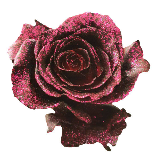 Black Tinted Roses with Pink Glitter