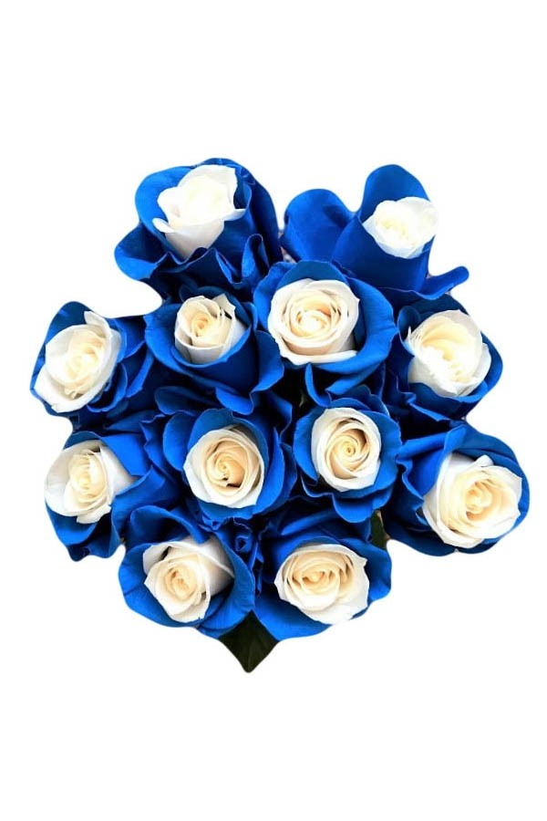blue airbrushed roses