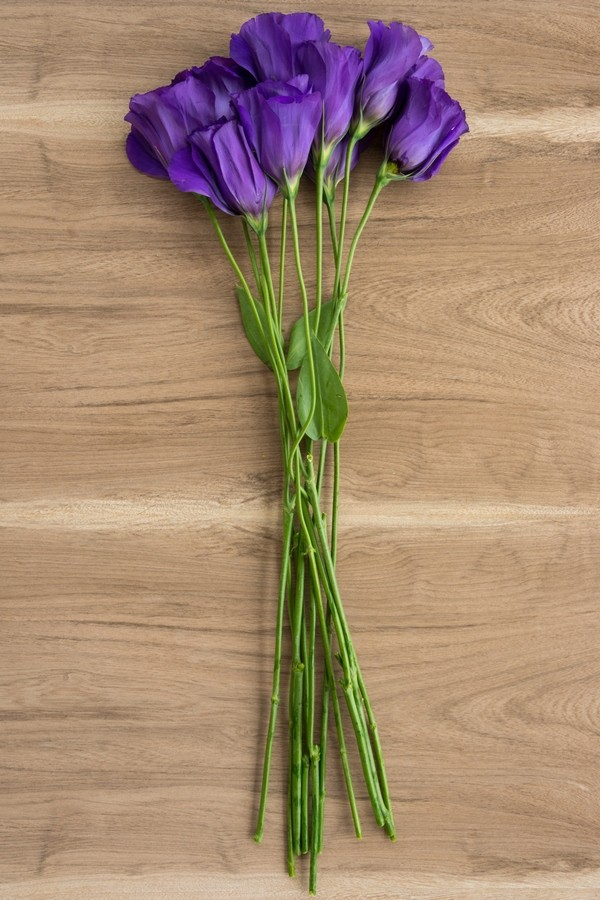 Lisianthus Purple