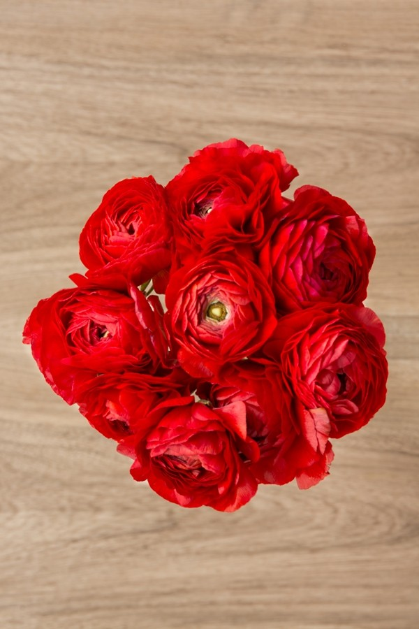 Red Ranunculus Bouquet