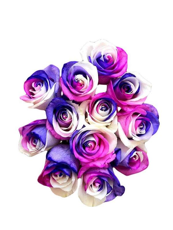 unicorn tinted roses