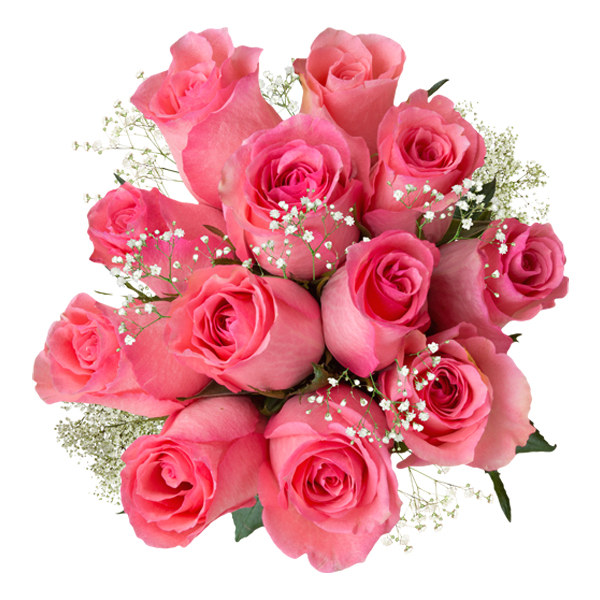 light pink roses with filler vday