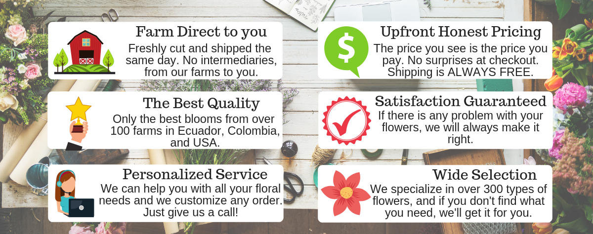 Farm Direct to you. The Best Quality. Personalized Service. Upfront Honest Pricing. Satisfaction Guaranteed. Wide Selection.